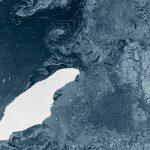 Крупнейший айсберг в мире может столкнуться с островом Южная Георгия