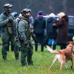В Минске силовики разгоняют колонну протестующих, идут аресты