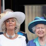Королева Елизавета II и ее супруг сделали прививки от COVID-19