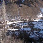 Минобороны распространило кадры из села Ашагы Шуртан Кельбаджарского района