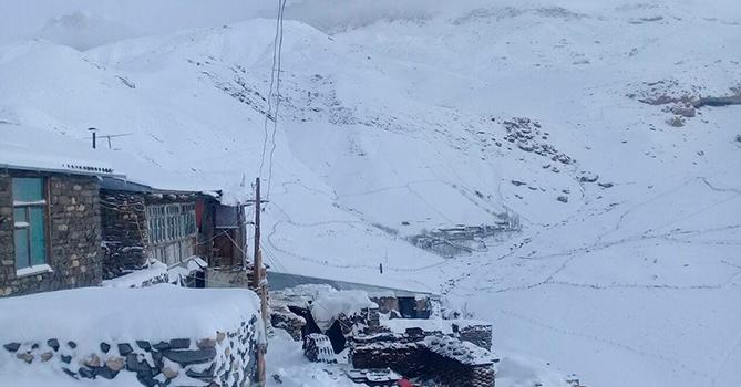 Высота снежного покрова в Гахе составила 43 см