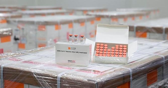 Обнародовано число вакцинированных в Азербайджане