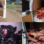 В Сальяне арестованы продавцы мертвечины - ВИДЕО
