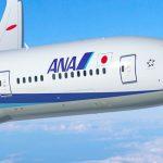 У крупнейшего авиаперевозчика Японии похитили данные миллиона пассажиров